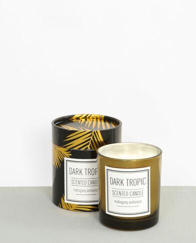 Dark tropic'-geurkaars zwart