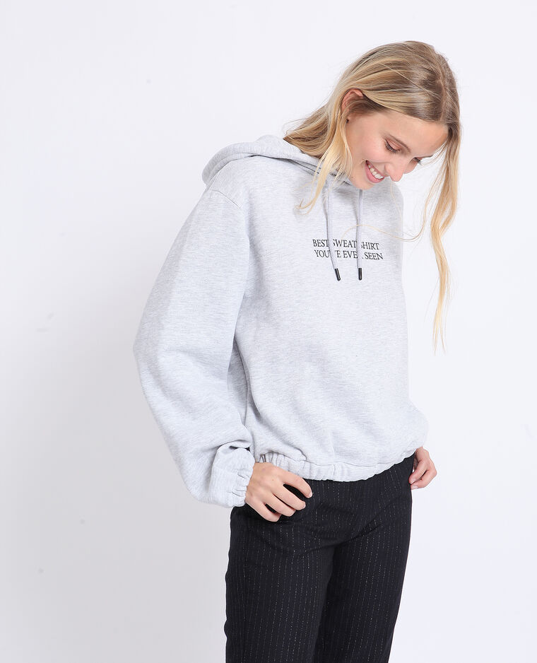 Sweat à capuche Gris