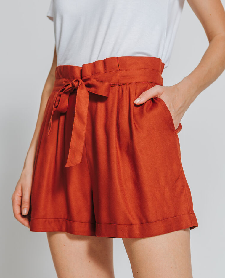 Short fluide brique