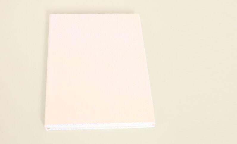 Notebook Paula Gonu bleu