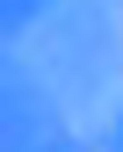 Lot de 2 barrettes bleu