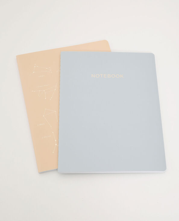 Lot de 2 notebooks bleu