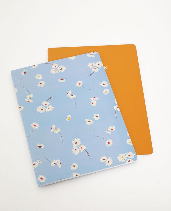 Lot de 2 notebooks jaune