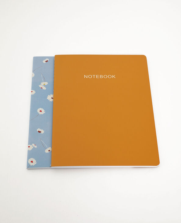 Lot de 2 notebooks jaune